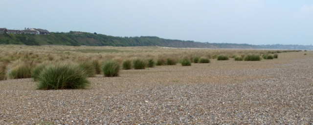 Wide shingle beach near Kessingland - Ruth's coastal walk