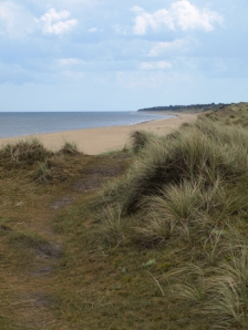 Walk along top of the Dunes, near Winterton, Norfolk, Ruth's coastal walk.