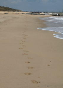 Ruth's footprints from Sea Palling, coastal walk, Norfolk