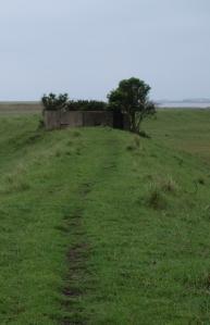 Old Pill Box, Suffolk Coastal Path, Boyton Marshes - Ruths coastal walk
