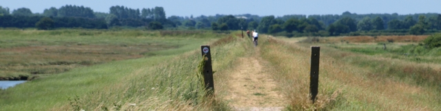 Long walk on bank, marshes near Dovercourt - Ruth's Coastal Walk