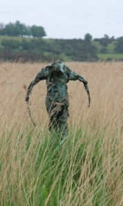Ruth on her coastal walk, meets a spooky figure in a Suffolk field - scarecrow on tree stump?