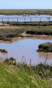 Hamford Marshes, Essex - Ruth's coastal walk