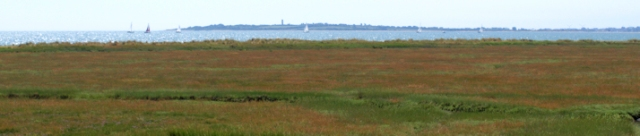 View across marshes to sea, near Dovercourt, Essex - Ruths coastal walk