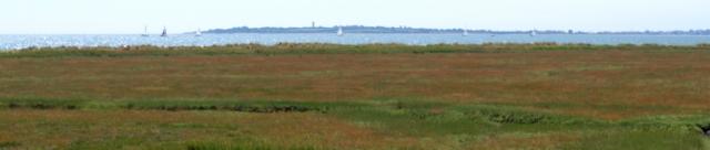 View across marshes to sea, near Dovercourt, Essex - Ruths coastal walk