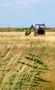 Cleaning out ditches - Essex, Ruths coastal walk, UK.