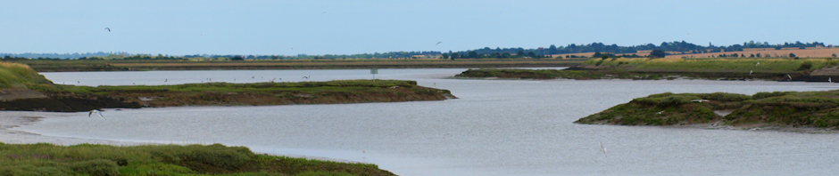 Marshes and Estuary, in Essex - Ruth's coastal walk