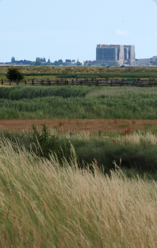 Bradwell Power Station, from across the marshes