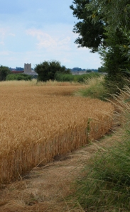 Footpath to Salcott-cum-Virley, Ruth's coastal walk
