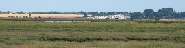 View back to West Mersea, Ruth's coastal walk