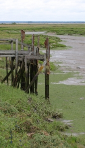 Ruined Jetties, Mayland Creek, Ruth's coastal walk, Essex.