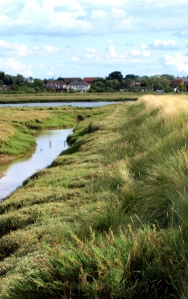 Path along marsh wall, Ruth's coastal walk - Essex marshes.