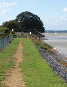 Private gardens across sea wall, Ruth's coastal hike