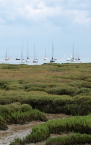 Ships in Mersea Quarters, seen across Old Hall Marshes, Ruth's coastal walk