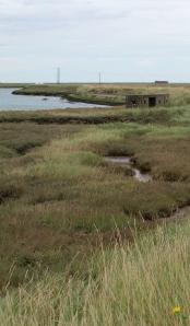 Paglesham Creek, Ruth's coastal walk, Essex