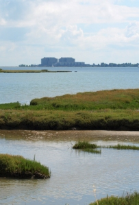 Marshes and River Blackwater, Ruth's coastal walk