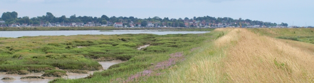 Sea wall, Old Hall Marshes, looking towards Mersea: Ruth's coastal walk