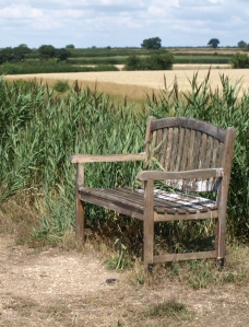 Nick Felsted's bench - Ruth's coastal walk, Essex