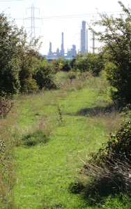Fobbing and oil refinery, Ruth's coastal walk, Essex