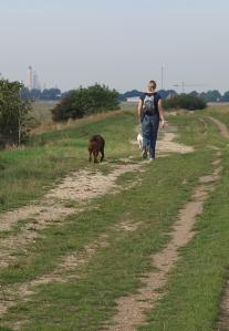 Walk from Southend towards Basildon, Ruth's coastal walk, Essex