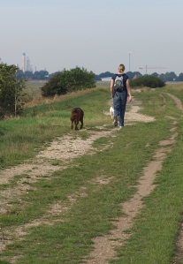 Walk from Southend towards Basildon, Ruth's coastal walk, Essex