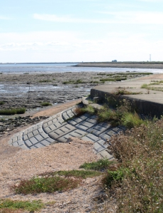 Sea wall, Dengie Marshes, Ruths coastal walk
