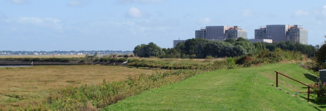 River bank, towards Bradwell power station, Ruths coastal walk