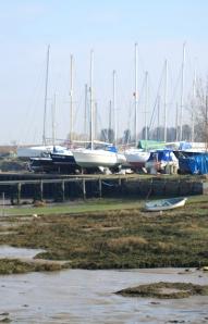 Marina, Kent. Ruth's coastal walk.