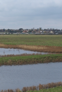 Allhallows Marshes, Ruth's coastal Walk