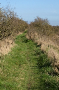 Nice path around industrial area, Saxon way, Ruth's coastal walk. Kent.