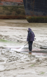 Hosing down in the Marina, Saxon Walk near Hoo. Ruth's coastal walk.