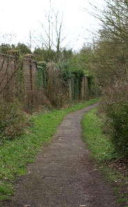 Path behind Upnor Castle, Ruths coastal walk.