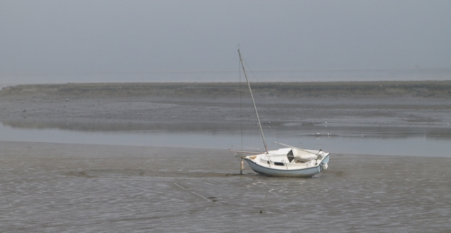 Boats in the mud, Conyer Creek, Swale, Kent. Ruths coastal walk.