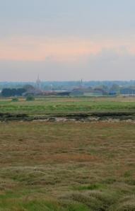 Faversham, viewed across Ham Marshes, Ruths coastal walk.