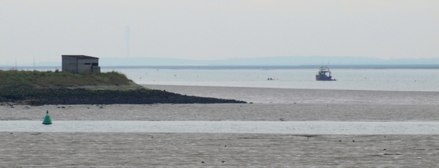 Hide, Oare Nature Reserve, seen from Nagden Marshes, Ruth's coastal walk.