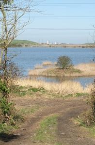 Track past Little Murston, Sittinbourne, Kent. Ruths coastal walk.