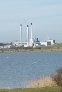 Paper Mill, Sittingbourne, Kent. Ruth's coastal walk.