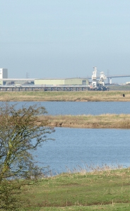 Jetty and Ridham Dock, Sittingbourne, Kent. Ruth's coast walk.