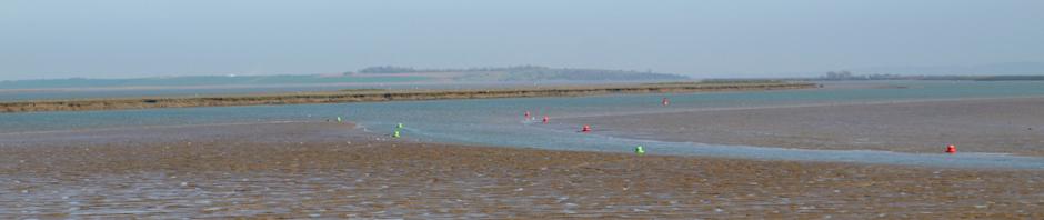 Conyer Creek to Isle of Sheppey, Kent, Ruth's coastal walk.