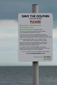 Dave the Dolphin sign, Hythe, Ruth's coastal walk in Kent.