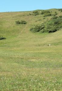 People on the ridge, Cow Gap, Beachy Head, Ruth's coastal walk.