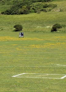 Cricket Pitch, Beachy Head, Ruth's coastal walk.