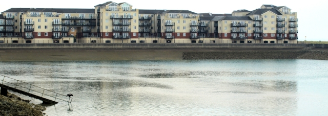 New development, Eastbourne, Ruths coastal walk.