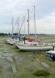 Thornham Marina, Thorney Island, Ruth's coastal walk.