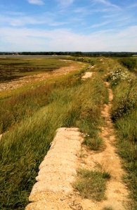 Path along sea wall, towards Prinsted, Ruth walks the coast in Sussex.