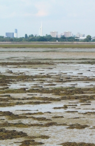 View of Portsmouth across Langstone Harbour, Ruth walks around the UK coast.