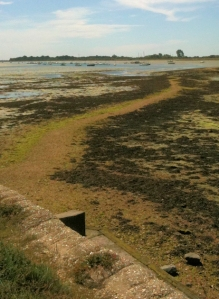 View towards Thorney Island, Ruth's coast walk.