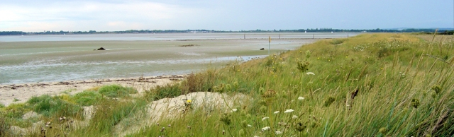 West side, Thorney Island, Ruth walks around the coast, Chichester Harbour.
