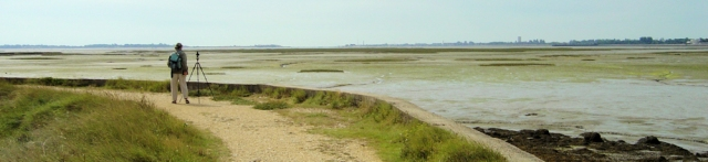 birdwatcher on Farlington Marshes, Ruth walks around the coastline