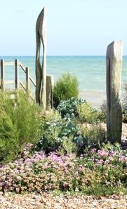 Waterwise Garden - 2 - Ruth's coastal walk
